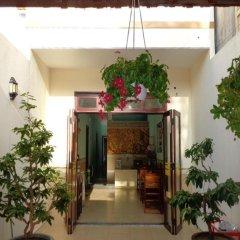 Banana Homestay And Hostel Хойан интерьер отеля фото 3