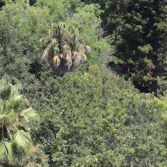 Отель Botanic Views Guest House Лиссабон