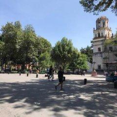 Отель Pepper My Love Мексика, Мехико - отзывы, цены и фото номеров - забронировать отель Pepper My Love онлайн спортивное сооружение