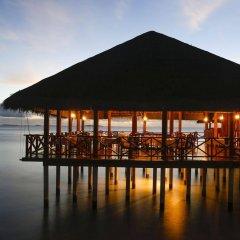 Отель Medhufushi Island Resort гостиничный бар