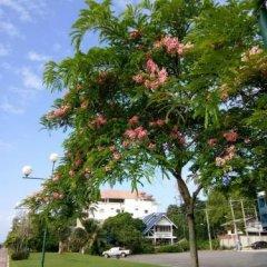 Отель Krabi River Hotel Таиланд, Краби - отзывы, цены и фото номеров - забронировать отель Krabi River Hotel онлайн фото 4