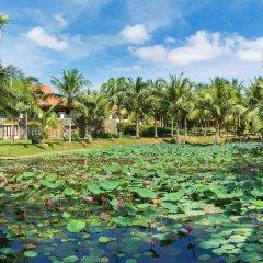Отель Pandanus Resort Фантхьет приотельная территория фото 2