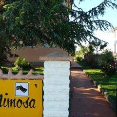 Отель La Mimosa Кастаньето-Кардуччи приотельная территория фото 2