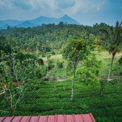 OYO 13548 Leaf Garden Cottage in Munnar, India from 39$, photos, reviews - zenhotels.com balcony