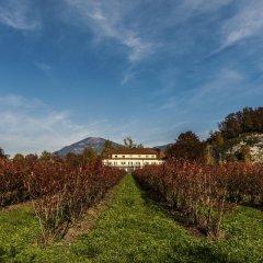 Отель Restaurant Villa Flora Аниф фото 12