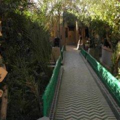 Отель Kasbah Mohayut Марокко, Мерзуга - отзывы, цены и фото номеров - забронировать отель Kasbah Mohayut онлайн с домашними животными