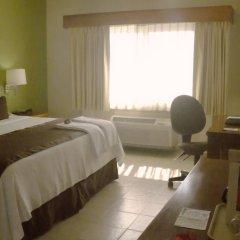 Отель Comfort Inn Puerto Vallarta Пуэрто-Вальярта в номере фото 2