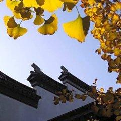 Отель Tongli Lakeview Hotel Китай, Сучжоу - отзывы, цены и фото номеров - забронировать отель Tongli Lakeview Hotel онлайн фото 3