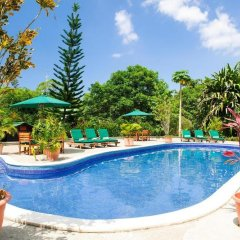 Отель The Lodge at Pico Bonito бассейн фото 3