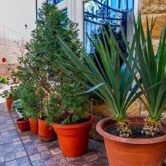 Гостиница Гостевой дом Эльмира в Сочи отзывы, цены и фото номеров - забронировать гостиницу Гостевой дом Эльмира онлайн фото 16