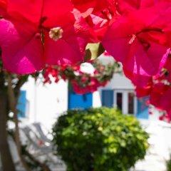 Отель Acrogiali фото 10