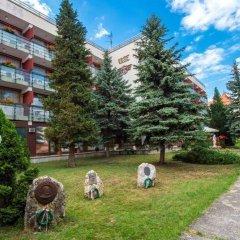 Отель Majerik Hotel Венгрия, Хевиз - 2 отзыва об отеле, цены и фото номеров - забронировать отель Majerik Hotel онлайн с домашними животными