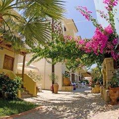 Апартаменты Lia Sofia Apartments фото 4