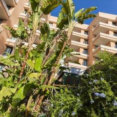 Отель Globales Nova Apartamentos Испания, Магалуф - 1 отзыв об отеле, цены и фото номеров - забронировать отель Globales Nova Apartamentos онлайн фото 19