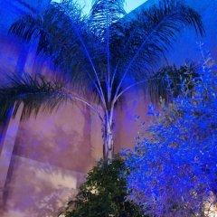 Отель Riad Tara Марокко, Фес - отзывы, цены и фото номеров - забронировать отель Riad Tara онлайн приотельная территория