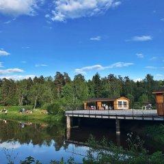 Отель Ok-Reka - campsite Звенигород приотельная территория фото 3
