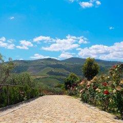 Отель Rural Quinta Do Silval Алижо фото 21