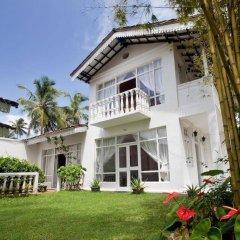 Отель Chitra Ayurveda Hotel Шри-Ланка, Бентота - отзывы, цены и фото номеров - забронировать отель Chitra Ayurveda Hotel онлайн фото 11