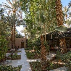 Отель Kasbah Sirocco Марокко, Загора - отзывы, цены и фото номеров - забронировать отель Kasbah Sirocco онлайн фото 19