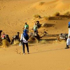Отель La Gazelle Bleue Марокко, Мерзуга - отзывы, цены и фото номеров - забронировать отель La Gazelle Bleue онлайн приотельная территория