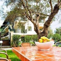 Отель Lemon Garden Villa Греция, Пефкохори - отзывы, цены и фото номеров - забронировать отель Lemon Garden Villa онлайн фото 8