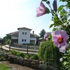 Отель Guest House Zdravec Болгария, Балчик - отзывы, цены и фото номеров - забронировать отель Guest House Zdravec онлайн фото 5