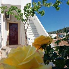 Отель Laza Beach Inn Греция, Агистри - отзывы, цены и фото номеров - забронировать отель Laza Beach Inn онлайн бассейн