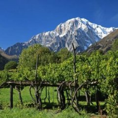 Mont Blanc Hotel Village фото 15