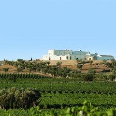 Отель Masseria Amastuola Wine Resort Криспьяно фото 11