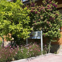 Hotel Ozlem Garden - All Inclusive фото 17