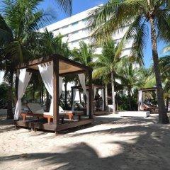 Отель Oasis Palm Hotel Мексика, Канкун - 9 отзывов об отеле, цены и фото номеров - забронировать отель Oasis Palm Hotel онлайн городской автобус