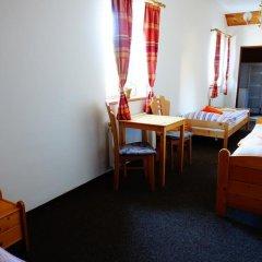 Отель Penzion U Studánky Чехия, Чодов - отзывы, цены и фото номеров - забронировать отель Penzion U Studánky онлайн комната для гостей фото 3