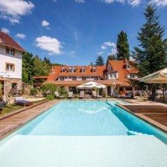 Отель Nomad Hotel Венгрия, Носвай - отзывы, цены и фото номеров - забронировать отель Nomad Hotel онлайн бассейн фото 2