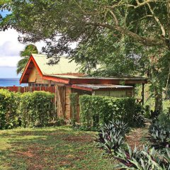 Отель Maravu Taveuni Lodge фото 13