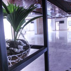 Отель Gold Oceanus Нячанг бассейн