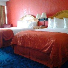 Отель Dolphin Beach Resort комната для гостей фото 5