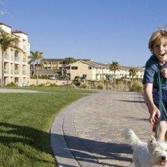 Отель Dolphin Bay Resort and Spa спортивное сооружение