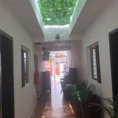 Отель Xahtal Alux Hostal Мексика, Плая-дель-Кармен - отзывы, цены и фото номеров - забронировать отель Xahtal Alux Hostal онлайн фото 8