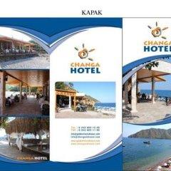 Changa Hotel Турция, Чавушкёй - отзывы, цены и фото номеров - забронировать отель Changa Hotel онлайн городской автобус