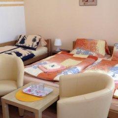 Отель Penzion u Vlčků Чехия, Хеб - отзывы, цены и фото номеров - забронировать отель Penzion u Vlčků онлайн комната для гостей фото 2