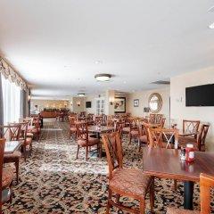 Отель Arlington Court Suites Hotel США, Арлингтон - отзывы, цены и фото номеров - забронировать отель Arlington Court Suites Hotel онлайн развлечения
