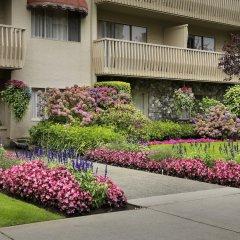 Отель Royal Scot Hotel & Suites Канада, Виктория - отзывы, цены и фото номеров - забронировать отель Royal Scot Hotel & Suites онлайн фото 9