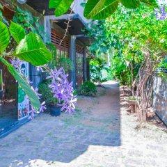 Отель Raj Mahal Inn Шри-Ланка, Ваддува - отзывы, цены и фото номеров - забронировать отель Raj Mahal Inn онлайн фото 3