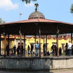 Отель Casa Aldama Мексика, Мехико - отзывы, цены и фото номеров - забронировать отель Casa Aldama онлайн спортивное сооружение