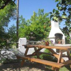 Отель Isidora Hotel Греция, Эгина - отзывы, цены и фото номеров - забронировать отель Isidora Hotel онлайн фото 16