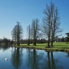 Отель Donnington Grove and Country Club фото 4