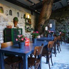 Zeytin Ağacı Hotel Турция, Стамбул - отзывы, цены и фото номеров - забронировать отель Zeytin Ağacı Hotel онлайн питание фото 3