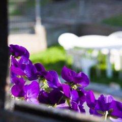 Отель Ulpia House Болгария, Пловдив - отзывы, цены и фото номеров - забронировать отель Ulpia House онлайн фото 3