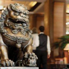 Отель Royal Singi Hotel Непал, Катманду - отзывы, цены и фото номеров - забронировать отель Royal Singi Hotel онлайн с домашними животными