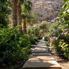 Отель Santorini Mystique Garden Греция, Остров Санторини - отзывы, цены и фото номеров - забронировать отель Santorini Mystique Garden онлайн фото 5